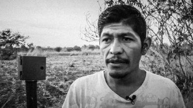 Photo of A Obrador le preocupa más su imagen que asesinato de activista: Vox Populli