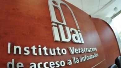 Photo of IVAI retomará actividades de oficina el 15 de julio