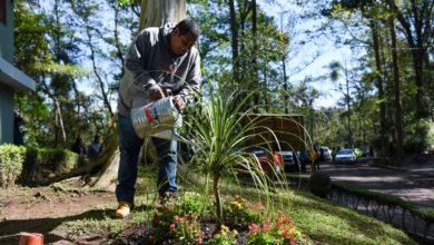 Photo of Más unidades para el mantenimiento de parques y jardines