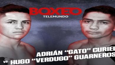Photo of Gatito Curiel y Hugo Guarneros listos para disputar título CMB