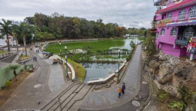 Photo of UV recomienda áreas verdes urbanas para reducir estrés y ansiedad