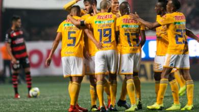 Photo of Tigres es el mejor equipo de la Liga MX, asegura Raymundo Fulgencio