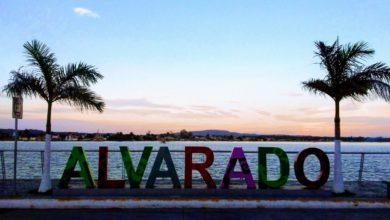 Photo of Alvarado solo le pagará un 50% de sueldo a funcionarios públicos