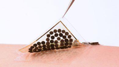 Photo of Producir energía a partir del sudor para alimentar a todo tipo de biosensores