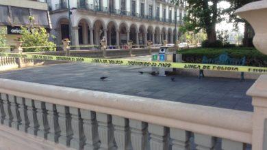 Photo of Analizan posibilidad de abrir parques en Xalapa