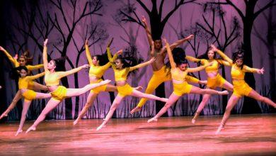 Photo of Celebran virtualmente el Día Internacional de la Danza