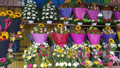 Photo of Caerían ventas hasta un 80% por cierre de negocios