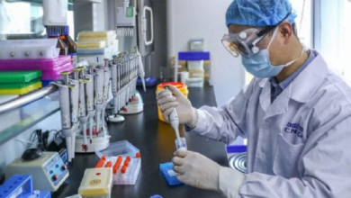 Photo of Científicos indios prueban una vacuna contra lepra para tratar COVID-19