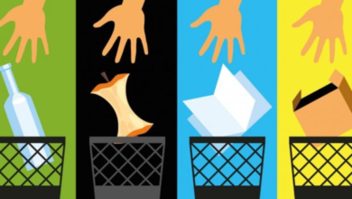 Photo of 50 por ciento de los xalapeños ya separan la basura