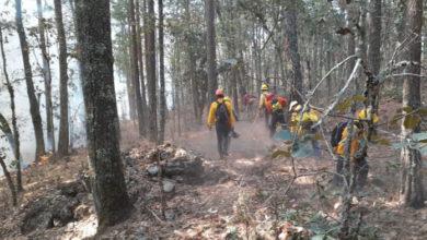 Photo of Trabaja CONAFOR para apagar dos incendios en Zacatlán