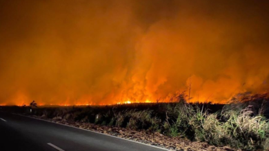 Photo of Inicia la semana con 52 incendios forestales