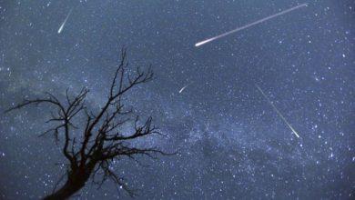 Photo of Abra lluvia de estrellas este mes, te decimos cuando verla