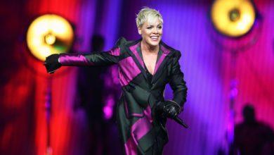 Photo of Pink y su hijo dan positivo por coronavirus, la cantante donará un millón de dólares