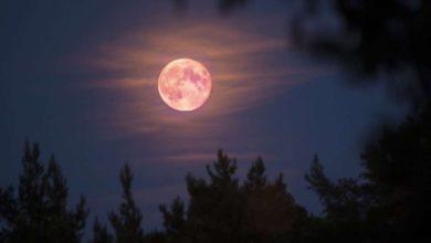 Photo of El próximo martes se podrá apreciar la superluna rosa
