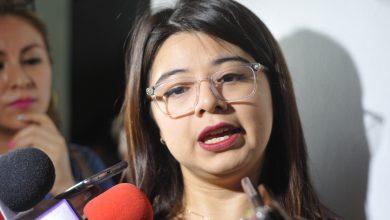 Photo of Extinción de fideicomisos no terminaría con apoyos, dice Diputada