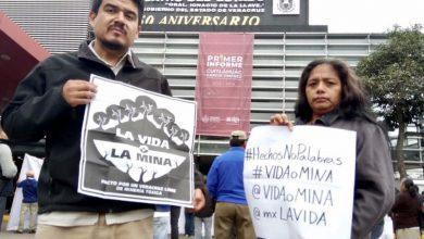 Photo of Ambientalistas tramitarán amparo por extinción del FAV