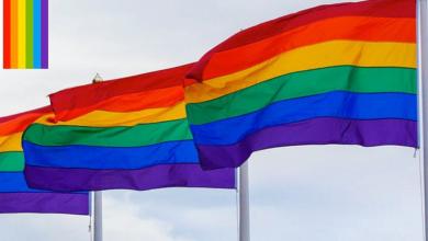 Photo of Gobernación promoverá que estados adopten matrimonio igualitario