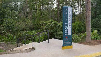 Photo of Personal de Parques y Jardines podrían retomar labores hasta agosto