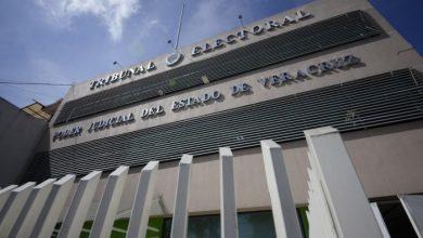 Photo of TEEV determinará sanción a diputados que entregaron despensas