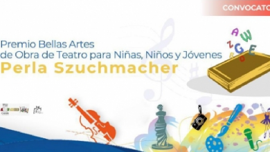 Photo of Convocan al Premio Bellas Artes Perla Szuchmacher 2020