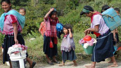 Photo of Covid-19 devasta a las  comunidades indígenas: ONU