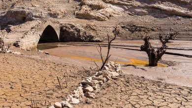 Photo of Europa central podría enfrentarse a su peor sequía en 500 años