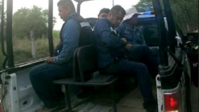 Photo of Detienen a 4 ladrones pobladores de Naolinco