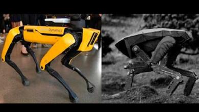 Photo of Como en Black Mirror, perros robot patrullan calles de Singapur por Covid-19