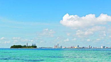 Photo of Playas de Veracruz se vuelven azul turquesa por ausencia de humanos