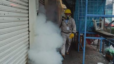 Photo of Salud, sin bajar la guardia contra dengue, zika y chikungunya