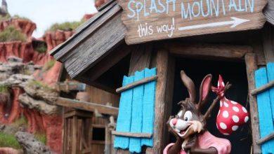 Photo of Disney hará cambios en atracción turística por ser racista