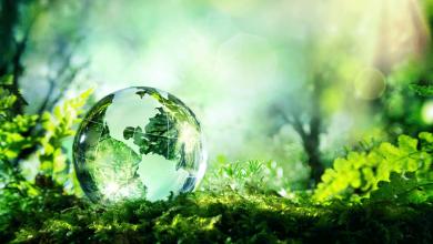 Photo of Día Mundial del Medio Ambiente, por qué se celebra el 5 de junio