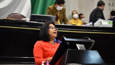 Photo of Atender enfermedades por vectores en municipios, pide Diputada Deisy
