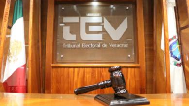 Photo of TEV también regresa el 1 de julio pero con caretas y cubrebocas