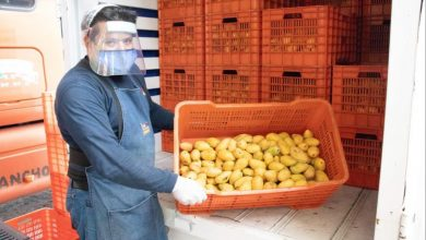Photo of Realizan productores de mango donativo al Banco de Alimentos de Xalapa