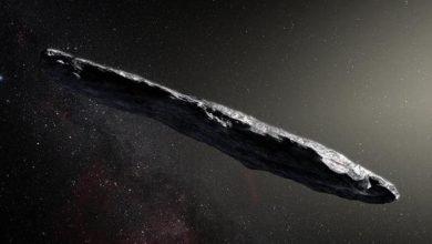 Photo of ¡Iceberg en el espacio! Revelan nueva teoría sobre el asteroide Oumuamua