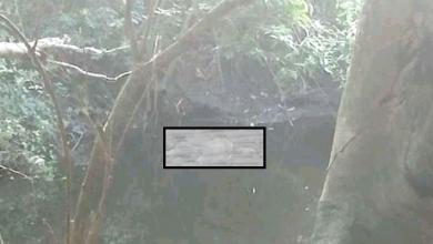 Photo of Hallan flotando cadáver de mujer con huellas de tortura
