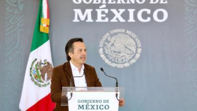 Photo of Veracruz contribuirá con 20 millones de árboles a la política de medio ambiente