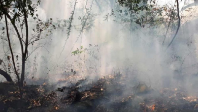 Photo of Joven que incendió el Tepozteco por grabar video de TikTok podría ir a la cárcel