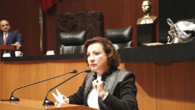 Photo of Guadalupe Murguía elevó la apuesta de reducir el IVA en todo el país
