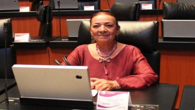 Photo of Propone senadora protección laboral a trabajadores de salud eventuales