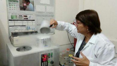 Photo of Investigadora de la UV realiza estudios de crioconservación en plantas