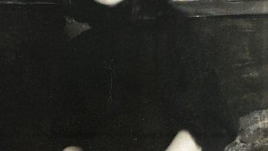 Photo of Conoce en línea la obra de Estrella Carmona