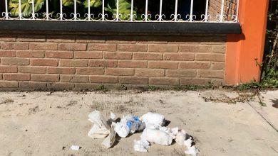Photo of Denuncian que recolectores dejan tirada basura en calles de Coatepec