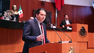 Photo of Senador pide a FONATUR que brinde toda la información sobre del Tren Maya