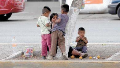 Photo of Aumenta número de menores trabajadores en calles de Xalapa