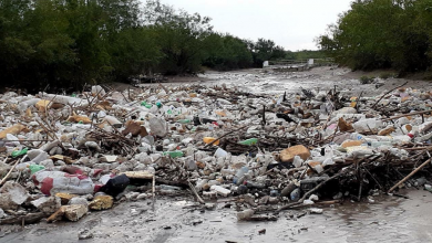 Photo of Así quedo de basura en el río Pesquería tras #Hanna