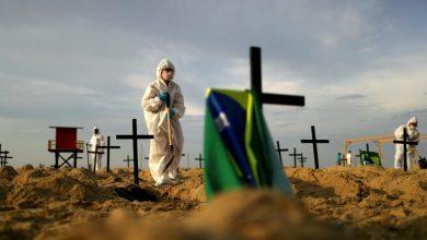 Photo of Vacuna contra el Covid-19 sera probada en Brasil