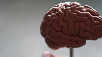 Photo of Científicos relacionan tipo raro de inflamación cerebral con COVID-19