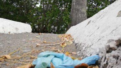 Photo of Municipios necesitan capacitación para tratar sus desechos sólidos